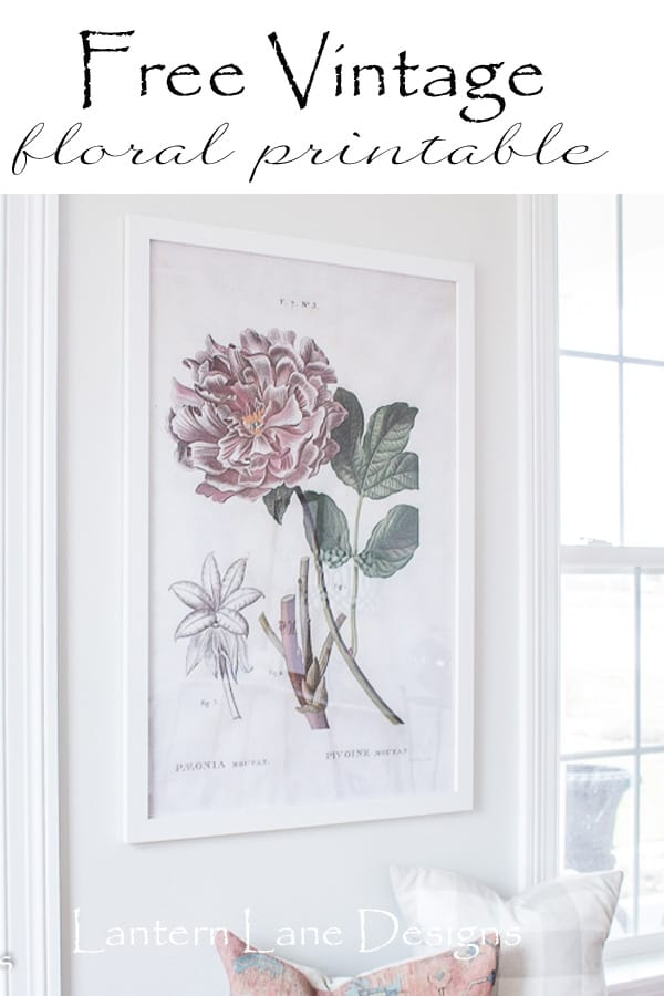 Free Vintage Floral Printable And Where To Find Free Art For Your Home