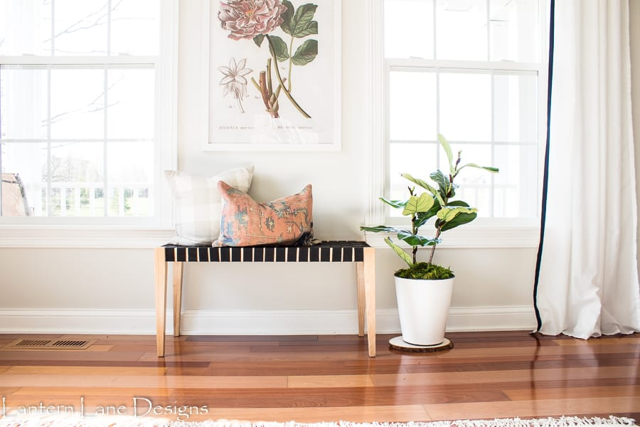 DIY fiddle leaf plant