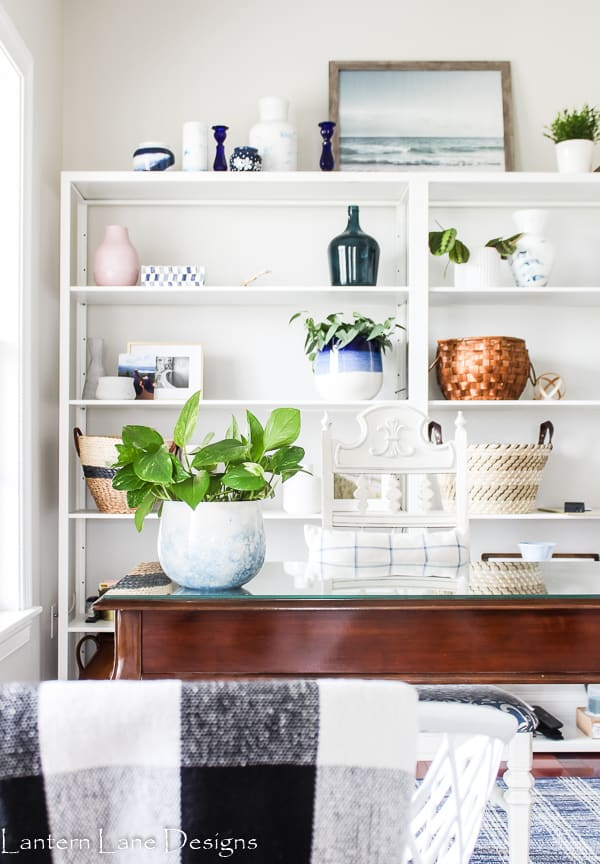 Indoor House plants that are easy to take care of
