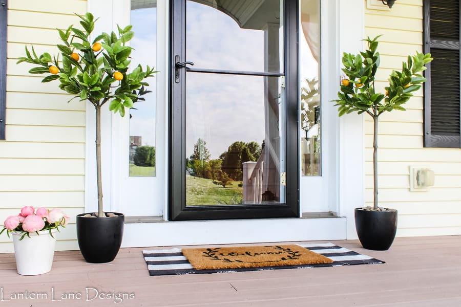 Summer front porch with lemon trees, plaid rug and storm door