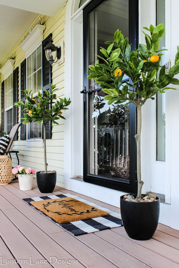 Summer front porch with lemon trees and plaid rug