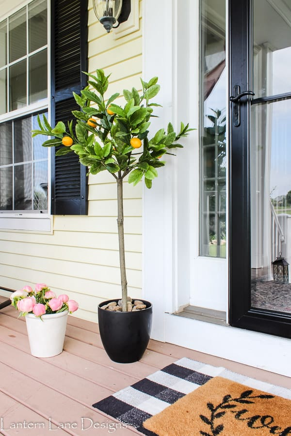 summer front porch lemon tree and plaid rug
