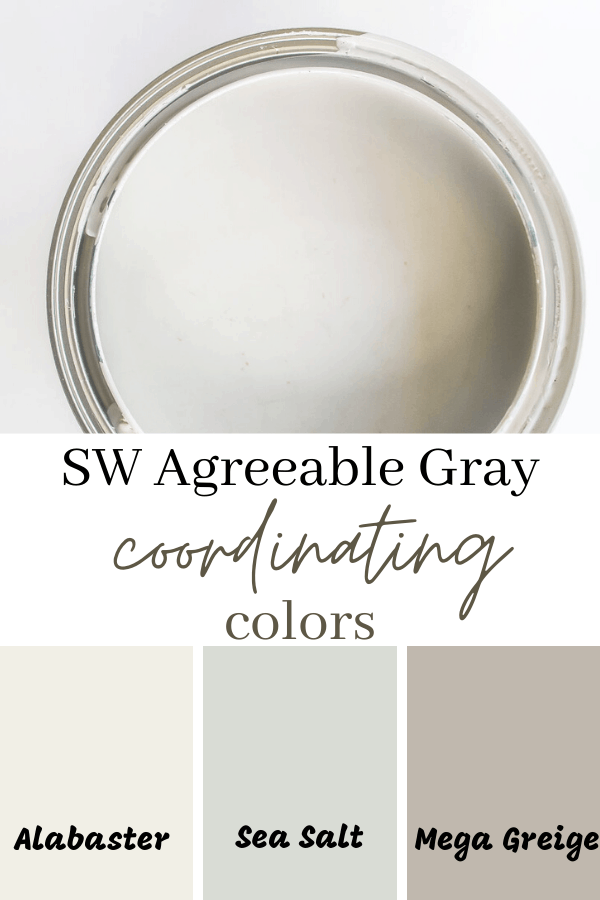 SW agreebale gray coordinating colors
